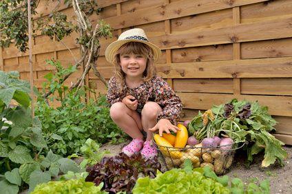 Gemüse anbauen – © chrisberic – Fotolia.com